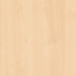 Starnberg Ahorn